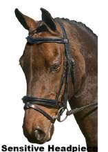 TG SIGNATURE CORDOBA SENSITIVE PATENT FLASH SNAFFLE COMFORT BRIDLE